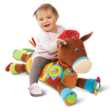 The Personalized Plush Pony Activity Center