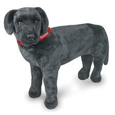 The Child's Own Personalized Pet (Black Lab)