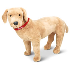 The Child's Own Personalized Pet (Yellow Lab)