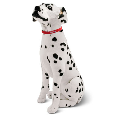 The Child's Own Personalized Pet (Dalmation)