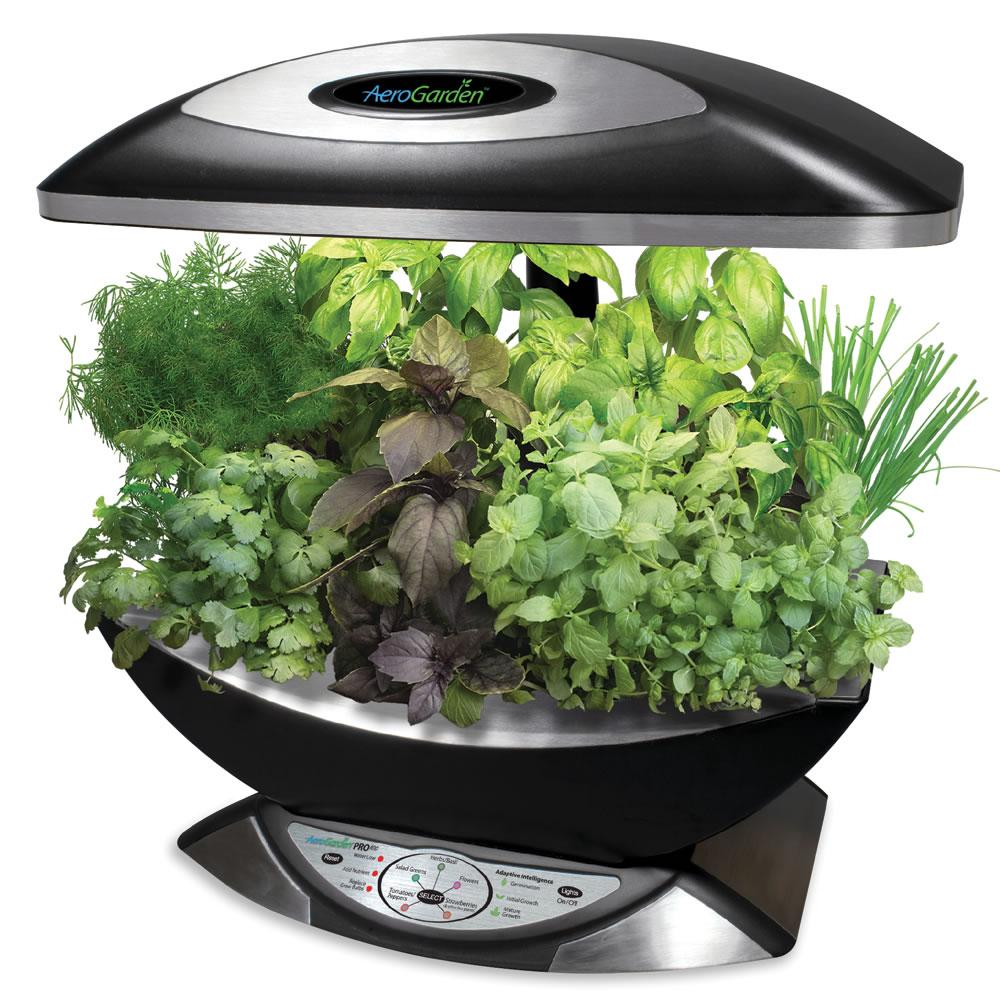 the kitchen counter herb garden