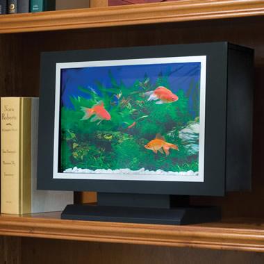 The Bookshelf Aquarium.
