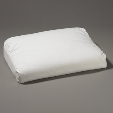 The Down Enveloped Memory Foam Pillow.