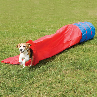 The Closed Tunnel Dog Agility Trainer.