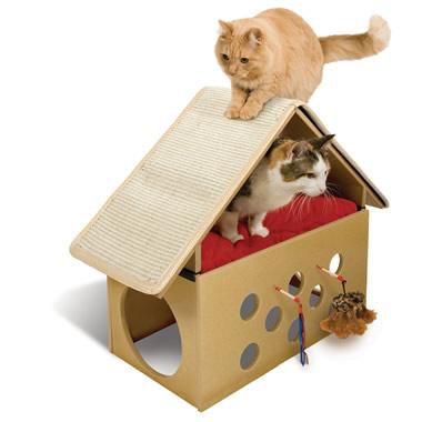 The Feline Rec Room.