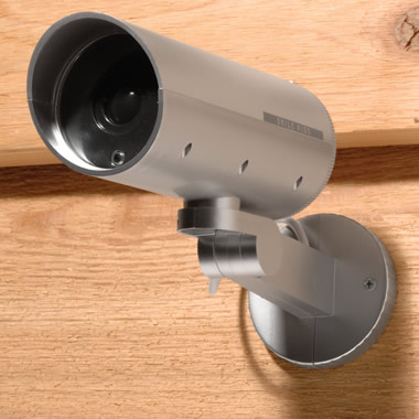The Panning Faux Security Camera Set