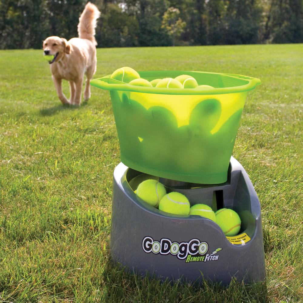 The Automatic Canine Fetch Machine Hammacher Schlemmer