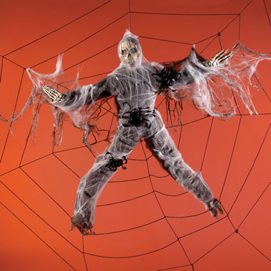 The 8 Foot Human Spider Web.