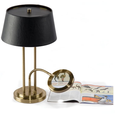The Desk Lamp With Lighted Magnifier.