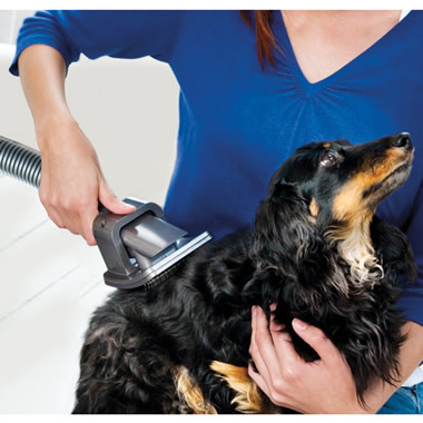 The Dog Hair Vacuum Grooming Brush.