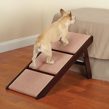 The Pet Ramp And Staircase.