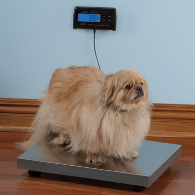 The Pet Scale
