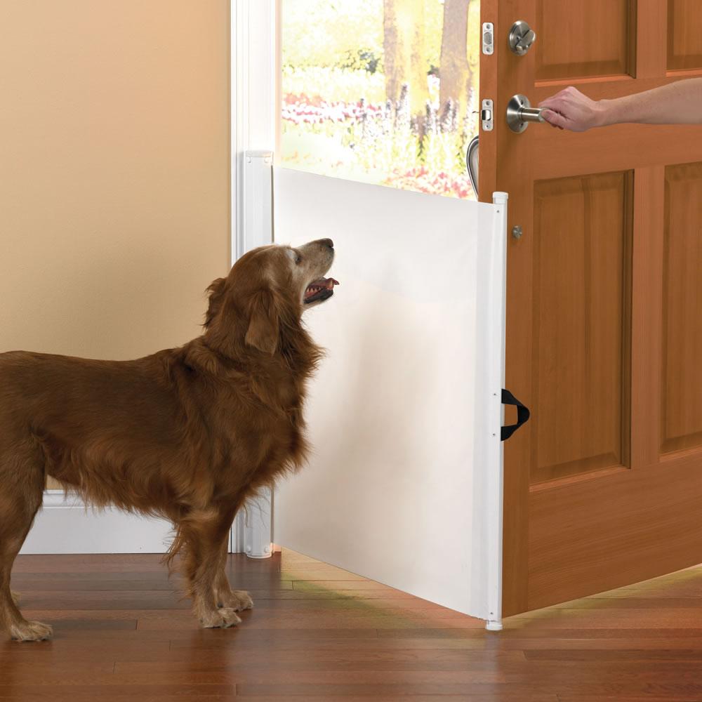 The Dog Escape Preventer Hammacher Schlemmer