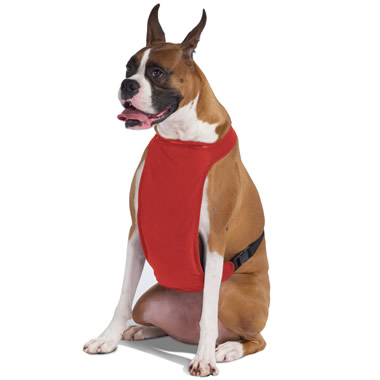 The Temperature Moderating Pet Harness.