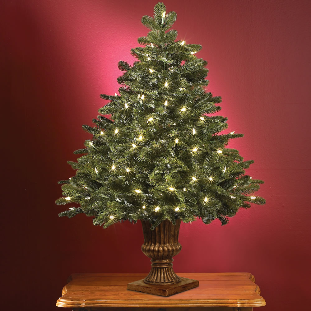 The World's Best Tabletop Prelit Noble Fir - Hammacher Schlemmer