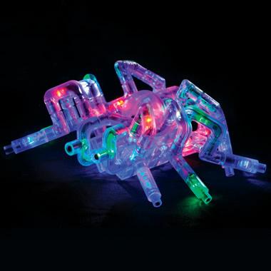 The Illuminated Arthropod Construction Kit