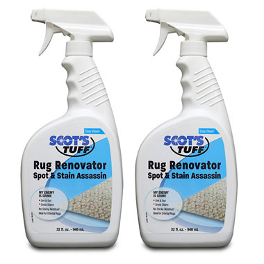 Shampoo For The Rug Rejuvenator.