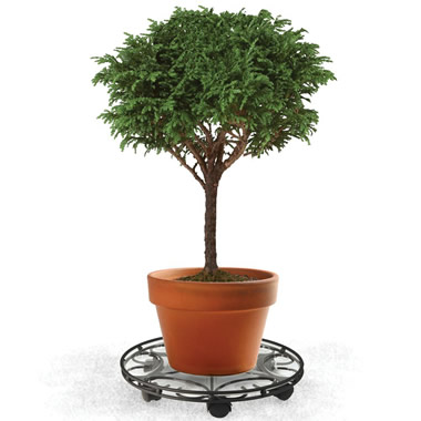 The Resort Landscaper's Oversized Plant Caddy (14 Inches)