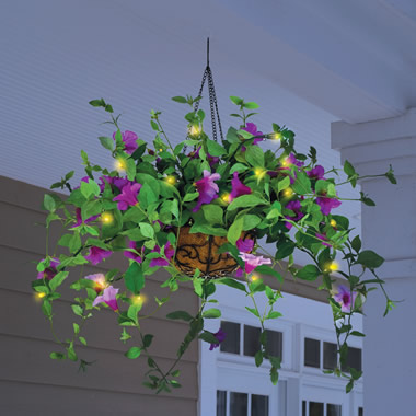 The Cordless Lighted Geranium Basket  (Purple).