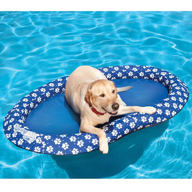 The Canine Pool Float