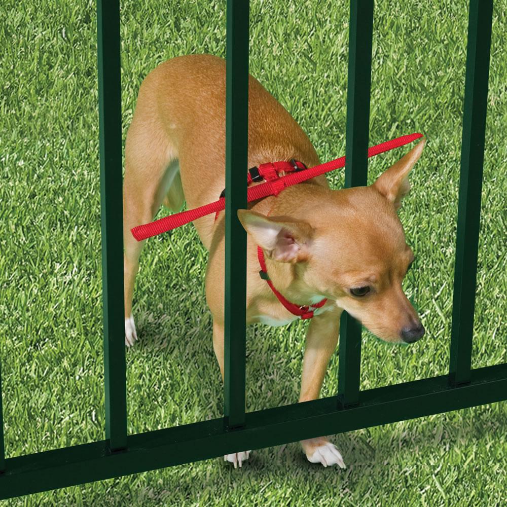 The Escape Preventing Dog Harness - Hammacher Schlemmer