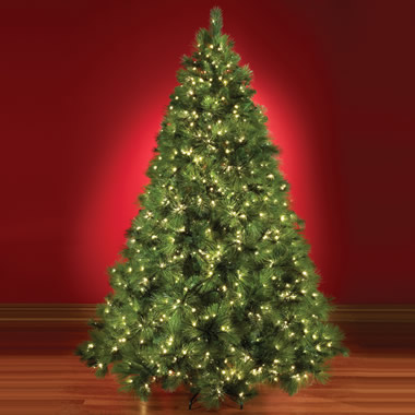 The World's Best Prelit Scots Pine  (8.5' Full).