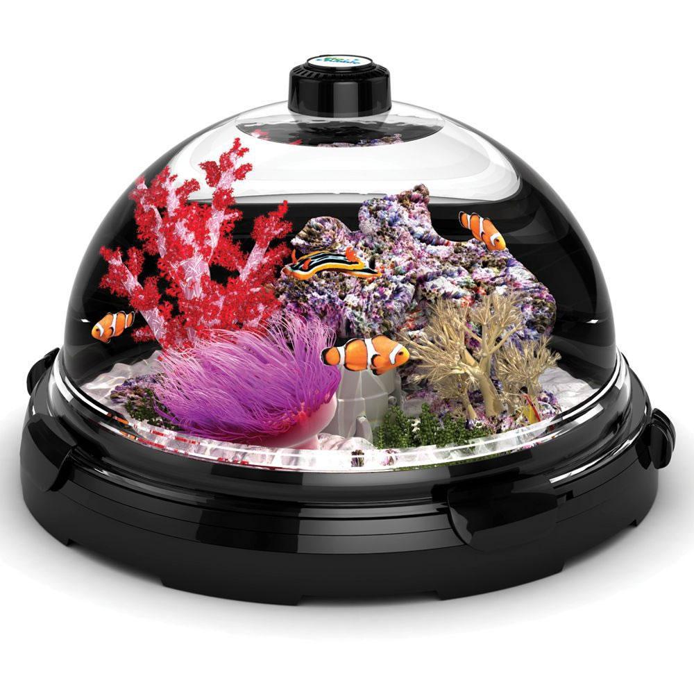 Bon The Tabletop Saltwater Aquarium