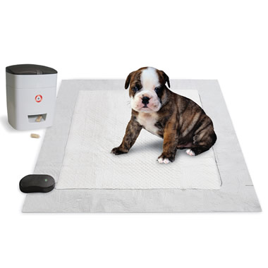 The Pavlovian Puppy Potty Trainer