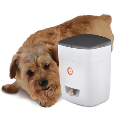 The Wireless Pavlovian Canine Trainer