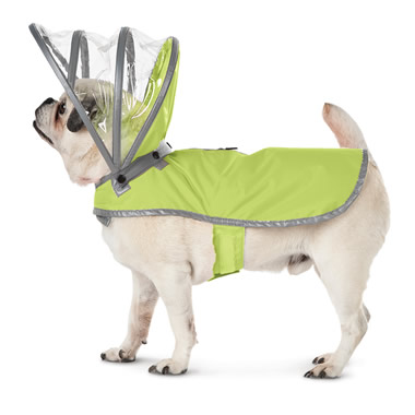 The Canine's Raincoat.