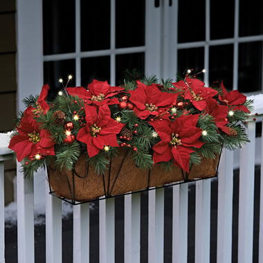 The Cordless Prelit Poinsettia Flower Box.