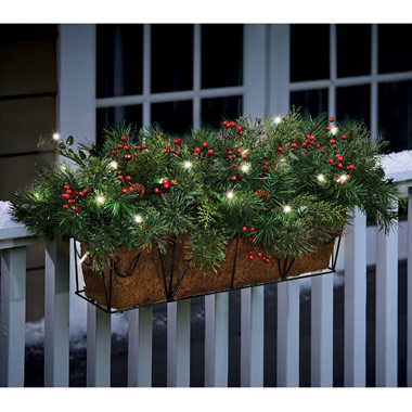 The Cordless Prelit Evergreen Flower Box