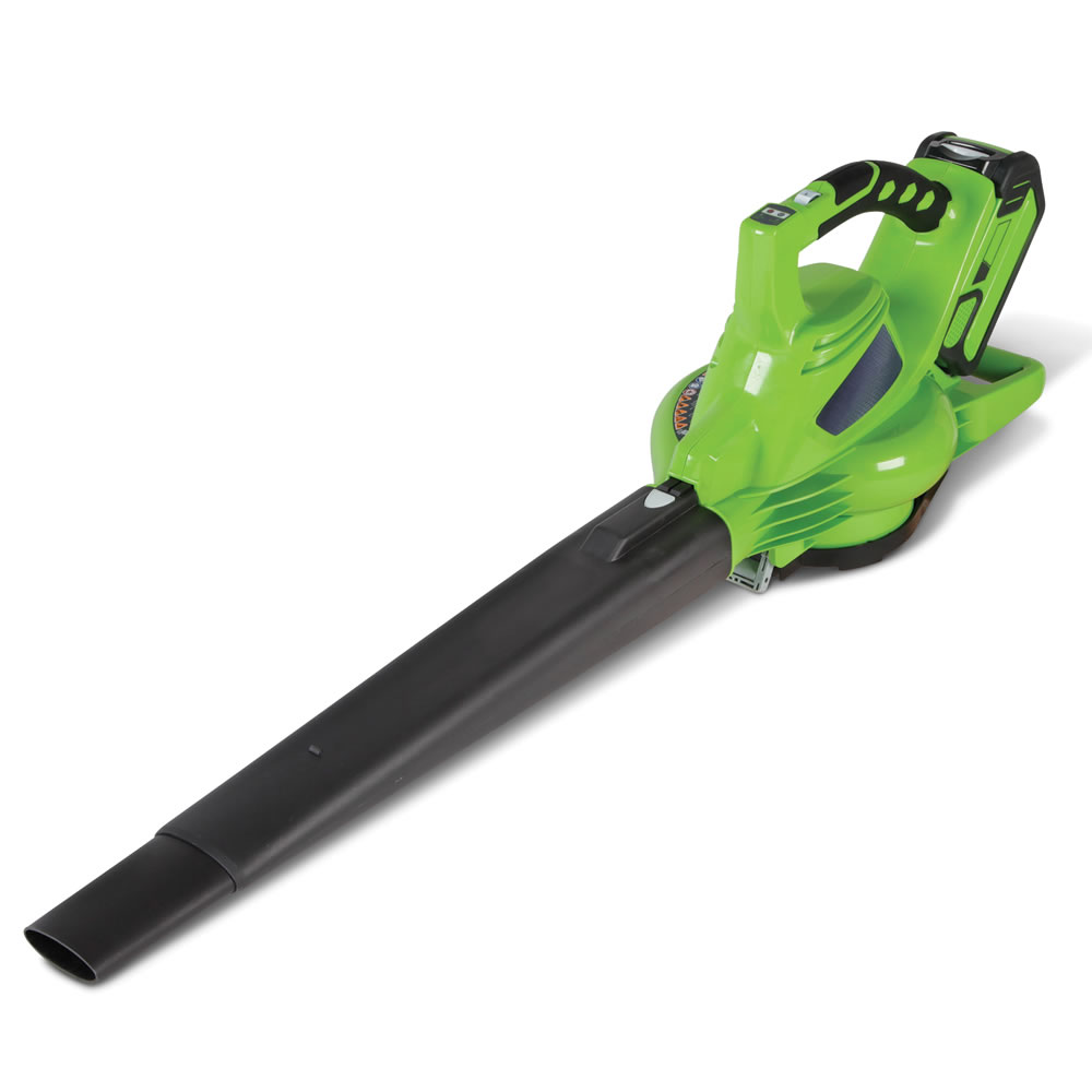 The Best Rechargeable Leaf Blower Hammacher Schlemmer