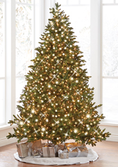 The World's Best Prelit Incandescent Noble Fir (9.5' Slim)