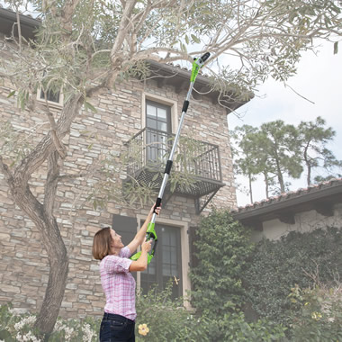 The Cordless Long Reach Chainsaw.