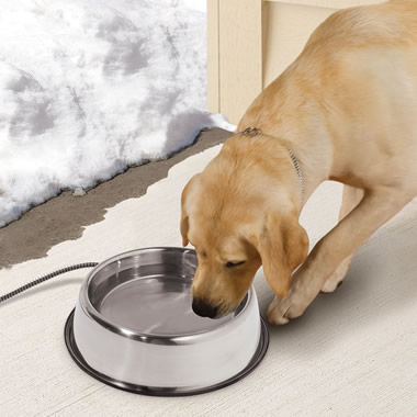 The Heated Outdoor Dog Bowl.