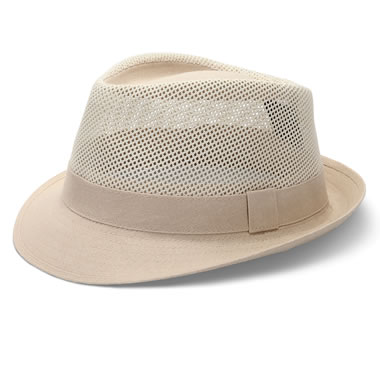 The Ventilated Fedora