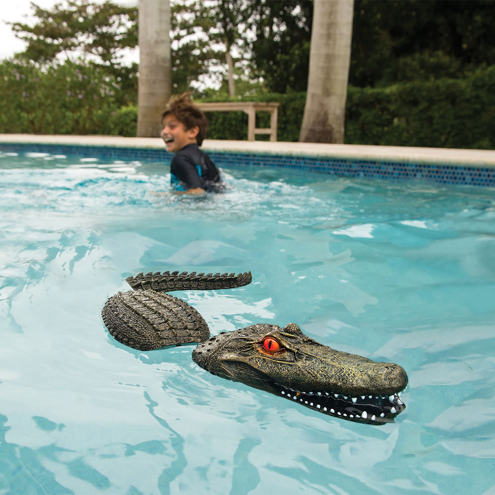The pool guarding gator hammacher schlemmer - Is there sales tax on swimming pools ...