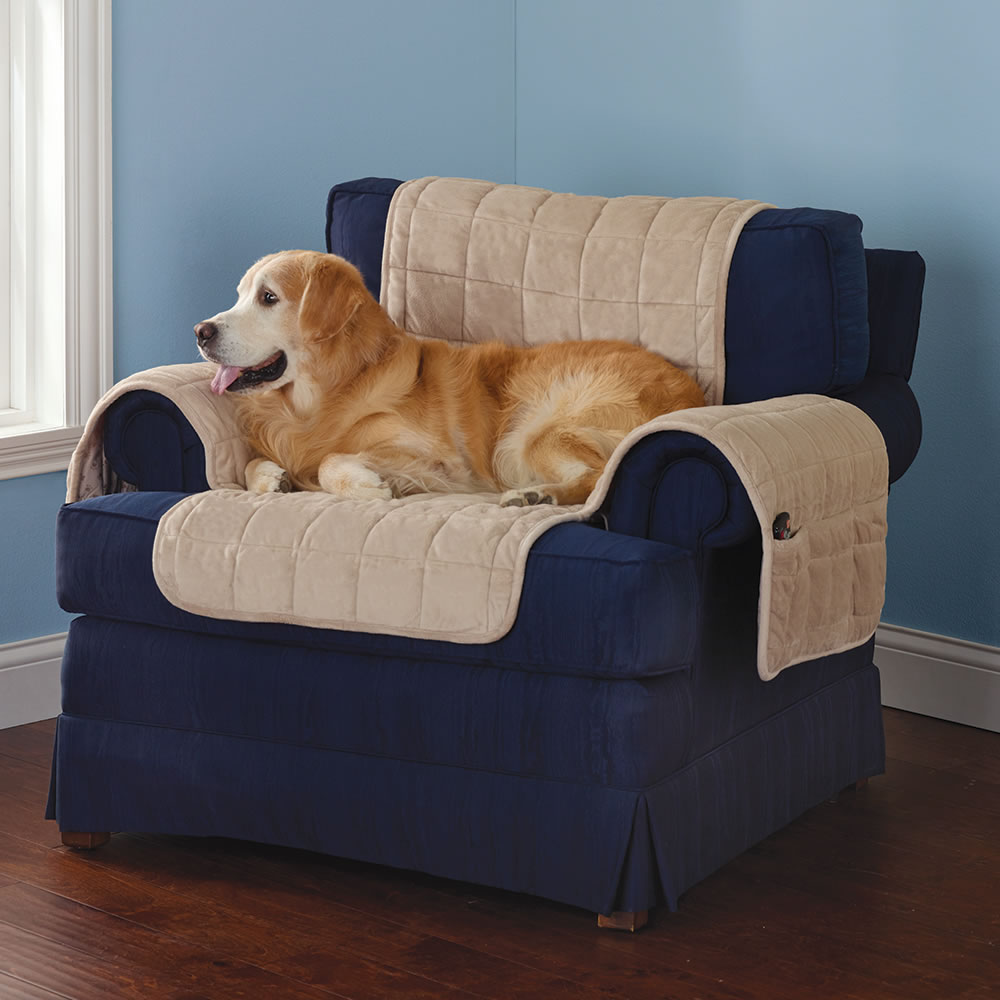 The Non Slip Furniture Protecting Pet Covers   Cement Chair Cover With Dog