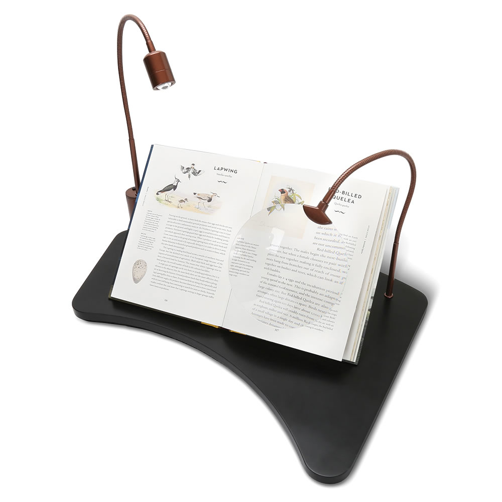 The Lap Desk With Magnifier And Light