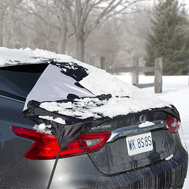 The Quick Removal Rear Window Snow Tarp