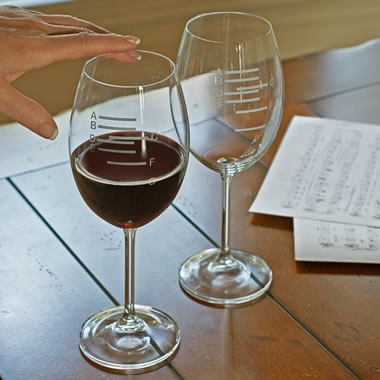 The Sommeliers Symphony Wine Glasses