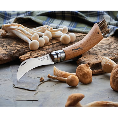 The French Chef's Truffle Harvesting Knife