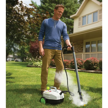 Weed Killing Steamer With Wheels