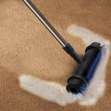 The Instant Rug Rejuvenator