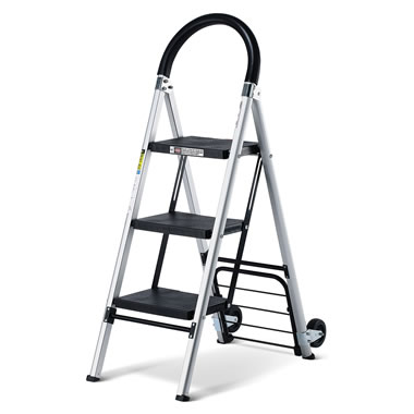 The 2 In 1 Ladder Handtruck