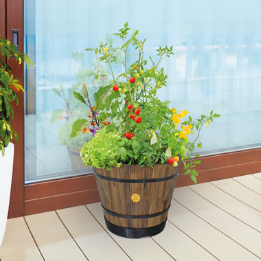 The Better Barrel Planter (Medium)