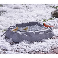 The Never Frozen Birdbath