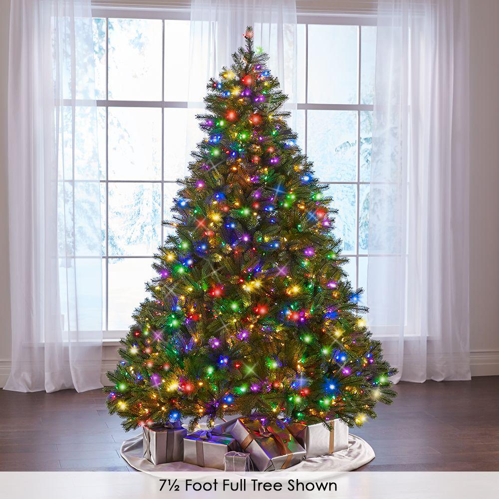 Douglas Fir Christmas Tree.The World S Best Prelit Douglas Fir Hammacher Schlemmer