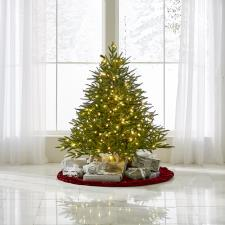 The World's Best Prelit Fraser Fir